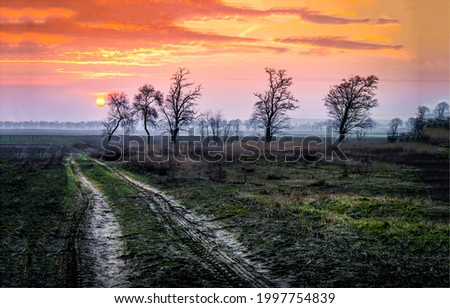 Sunset over the countryside road. Sunset countryside road. Rural field road at sunset. Sunset rural road