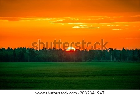 Sunset over the forest landscape. Beautiful sunset landscape. Orange sunset scene. Sunset landscape