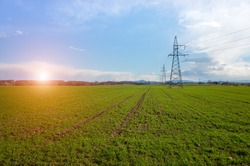 Sunset over the powerlines on the large green field