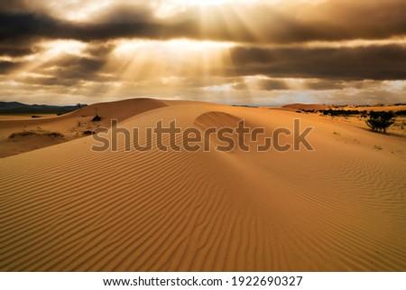 Sunset over the sand dunes in the desert. Arid landscape of the Sahara desert Stock photo ©