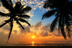 Sunset over the tropical beach with coconut palm and boat at koh Tao , Thailand . Koh tao is a paradise island in Thailand. silhouettes of palm trees and amazing cloudy sky on sunset at tropical Beach