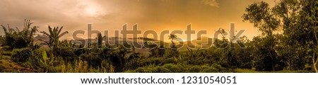 Sunset panorama after the passing of a storm in the rainforests of Borneo. Stock photo ©