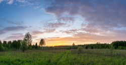 Sunset panoramic landscape of summer meadow with green grass in evening twilight under blue sky with clouds in bright sunset light, colorful panoramic view of field in sunset dusk with trees