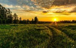 Sunset rural farm meadow horizon view