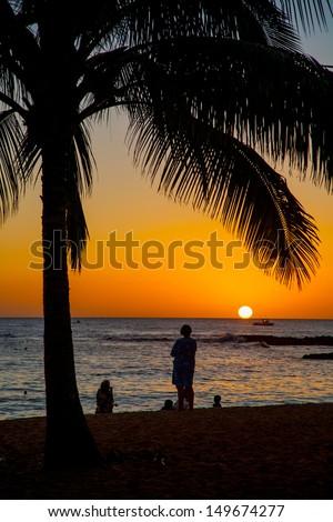 Sunset Scene at Tropical Beach Resort Silhouette