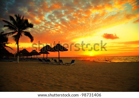 Sunset Scene at Tropical Beach Resort Silhouette