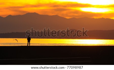 sunset scene of people walking on Ogden point breakwater in twilight, victoria, british columbia, canada