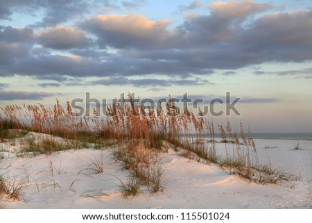 Sunset, Sea Oats  and Sand Dunes on the Beach