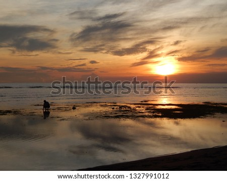 sunset sea scapes #1327991012