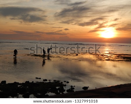 sunset sea scapes #1327991018