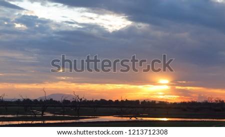 Sunset, sea sunset, savanna sunset