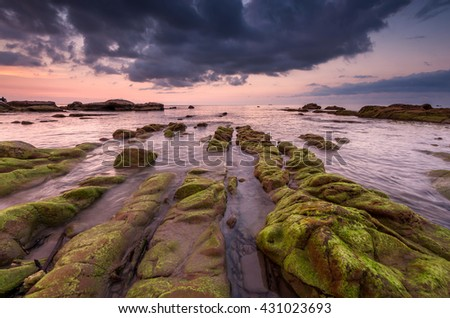 Sunset seascape with green moss foreground at Kudat Sabah malaysia. Image Contain soft focus and blur. - Shutterstock ID 431023693