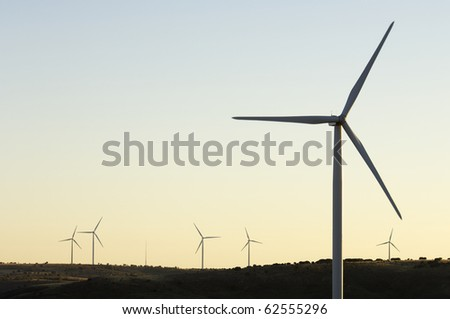 sunset silhouette of a group of mills for production of renewable electrical energy - stock photo