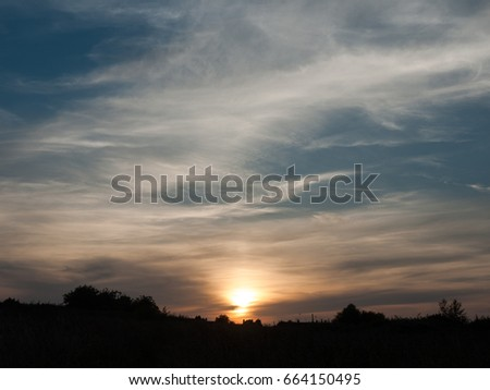 sunset sky outside with foliage silhouette #664150495