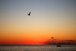 Sunset sky (the sun has set, clouds illuminated by rays) over the sea. A seagull and a fishing schooner. A romantic impression of a summer vacation, travel photo