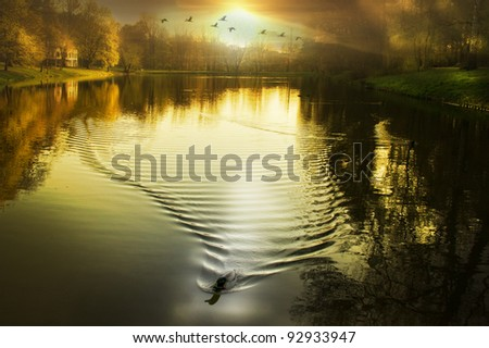 sunset/sundown/late summer evening on the lake located at City Park Lodz,Poland