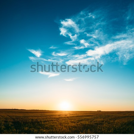 Sunset, Sunrise, Sun Over Rural Countryside Field. Bright Blue And Yellow, Orange Sky Over Meadow Ground. Copyspace #556995757