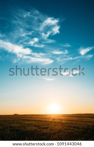Sunset, Sunrise, Sun Over Rural Countryside Meadow. Bright Blue And Yellow, Orange Sky And Dark Ground. Copyspace #1091443046
