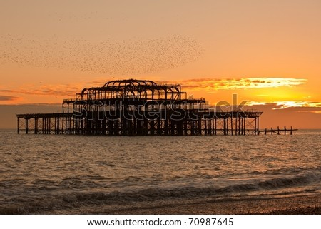 Sunset view of West pier in Brighton England with flock of birds fly over