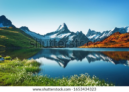 Sunset view on Bernese range above Bachalpsee lake. Highest peaks Eiger, Jungfrau and Faulhorn in famous location. Switzerland alps, Grindelwald valley