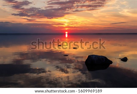 Sunset water horizon landscape. Ducks swim in sunset water. Sunset water horizon view. Sunset water sky horizon