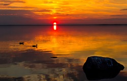 Sunset water horizon landscape view. Forest lake river scene