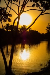 Sunset with backlight with sun through the silhouette of a tree and reflecting in the lake, silhouette of the vegetation in the background and len flare.
