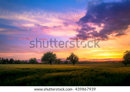 Sunset With Beautiful Saturated Colors Of Blue And Orange Over Field With Trees And Silky Clouds #439867939