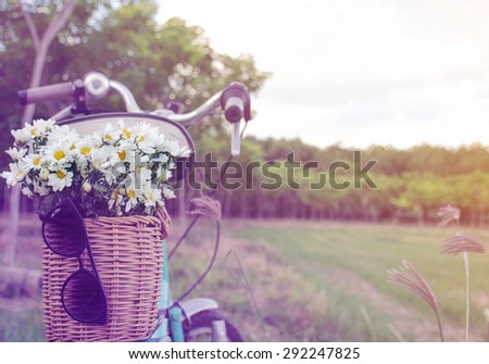 sunset with green retro bicycle with basket and white flowers