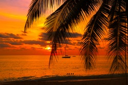Sunset with palm and longtail boats on tropical beach.  beautiful tropical beach view sunset with palm tree and boat. Pukhet island, Thailand