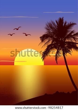 Sunset with palmtree silhouette - stock photo