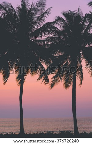 Stock Photo Sunset with silhouette Palm trees, Pastel Style