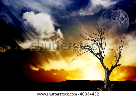 Sunset with tree and moon