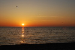 Sunset with yellow sun and flying birds under sea surface. panorama. banner. copy space. no people. Sea landscape. summer, holidays, vacation, travel, nature, romantic getaway, tourism concept