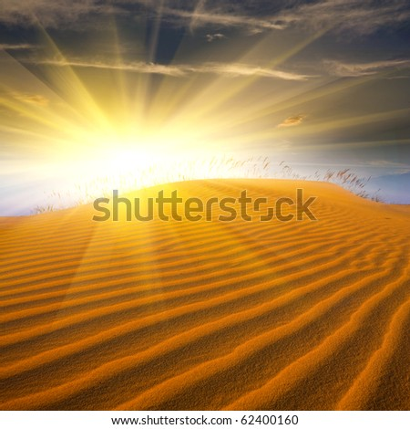 sunshine and sand in desert