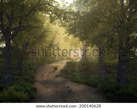 stock-photo-sunshine-in-a-mysty-forest-2