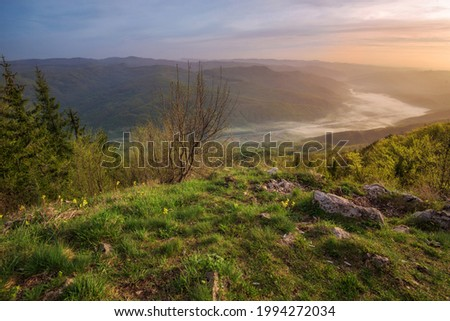 Sunshine with fog in valley, panoramic landscape from Oslusa viewpoint in Tara National Park in western Serbia. Misty morning in mountains with foggy Drina river view. Stock photo ©