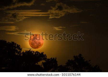 Super blue blood moon #1011076144