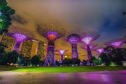 Super-tree park is landmark Singapore at night. cityscape is colorful show to lighting at Marina Bay Sand.
