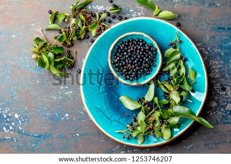 Superfood MAQUI BERRY. Superfoods antioxidant of indian mapuche, Chile. Bowl of fresh maqui berry and maqui berry tree branch on metal background, top view #1253746207