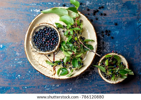 Superfood MAQUI BERRY. Superfoods antioxidant of indian mapuche, Chile. Bowl of fresh maqui berry and maqui berry tree branch on metal background, top view #786120880