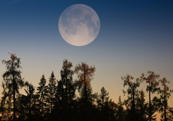 Supermoon.Full moon. The great moon at sunset. View of a big moon