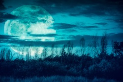 Supermoon. Night landscape of green sky with dark cloudy and moon over silhouette of trees in a wilderness area, outdoor in gloaming time. Serenity background.