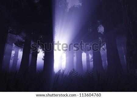 Supernatural Activites in Deep Dark Night Forest 3D render