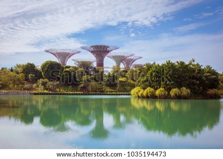 Supertree Grove in Garden by the Bay at Singapore. Landscape of Singapore business building around Marina bay. Modern high building in business district area at twilight. stock photo