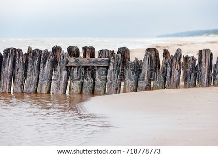 Supports of the old wooden pier #718778773