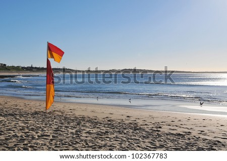 Surf flag on beach