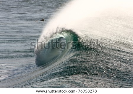 Surf wave curling into a barrel