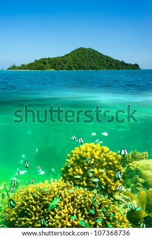 Surface and underwater view with blue sky
