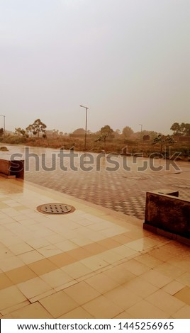 surface area with trees and rain